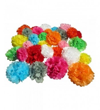 Use4Party Tissue Paper Pom Poms