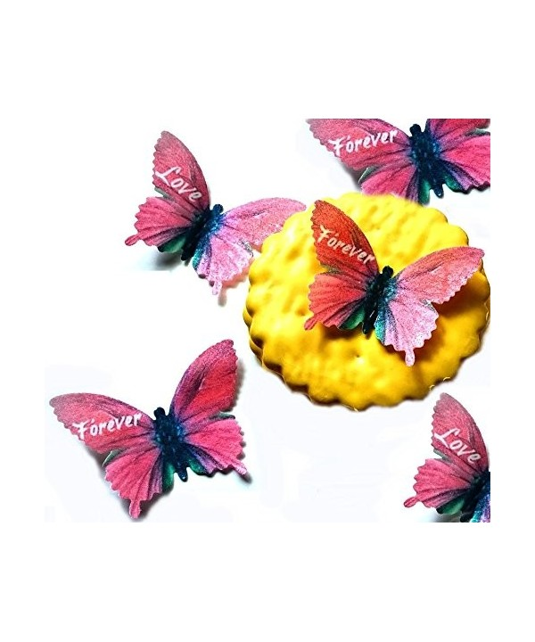 Forever Butterflies Decoration Valentines Anniversary