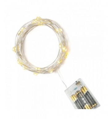 16ft Battery Operated String Lights