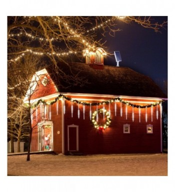 Most Popular Seasonal Lighting