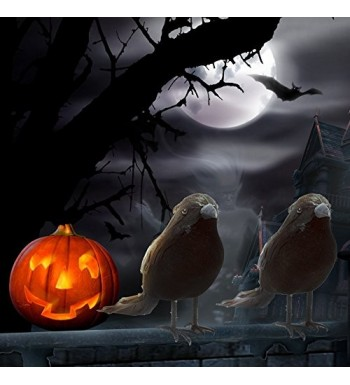 Fashion Halloween Party Decorations Online